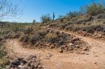 Deem Hills Trail - Switchback