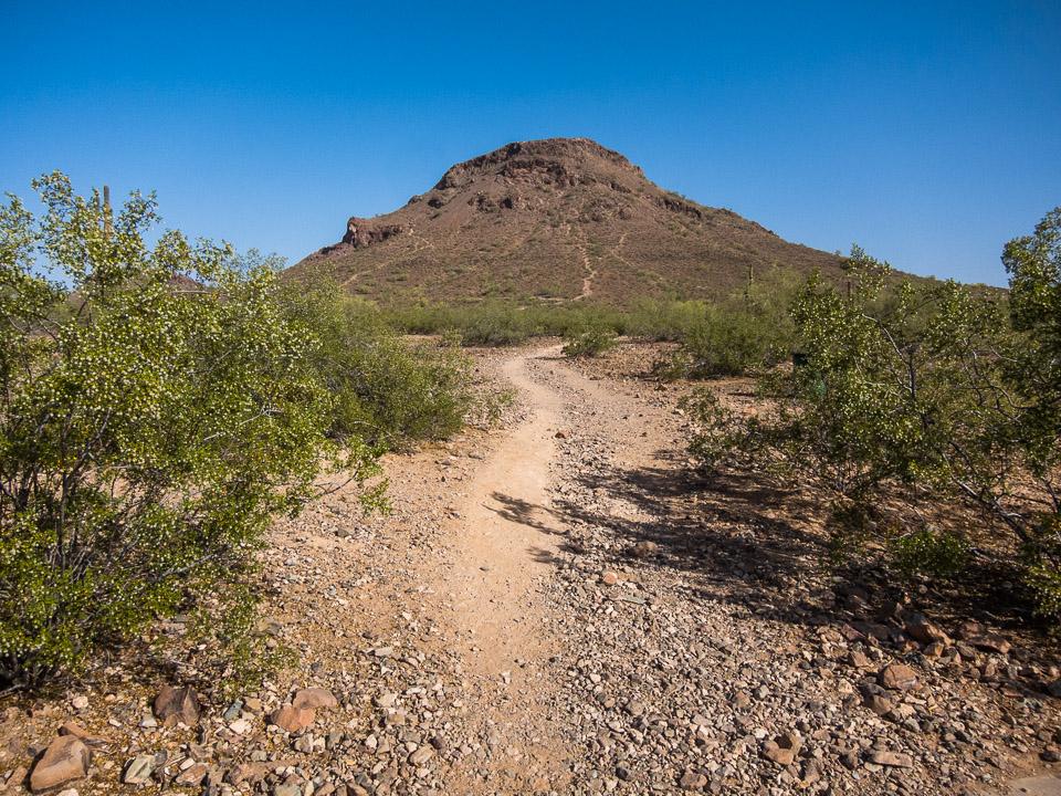 Moderate – Hike & Bike Phoenix on