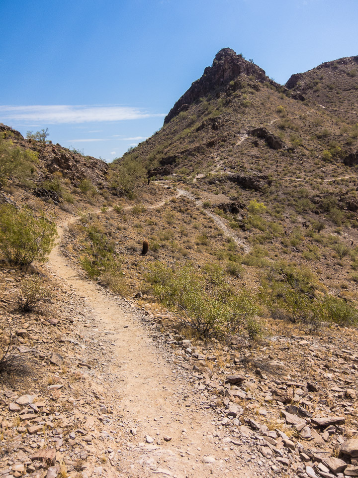Lookout mountain trail 308 hike bike phoenix sciox Choice Image