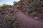 Papago Park Trail in SHADE!