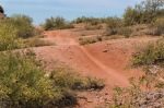 Papago Park - Rollers