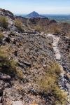 Piewesta Peak - Trail