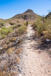 Trail 340 - Smooth Trail