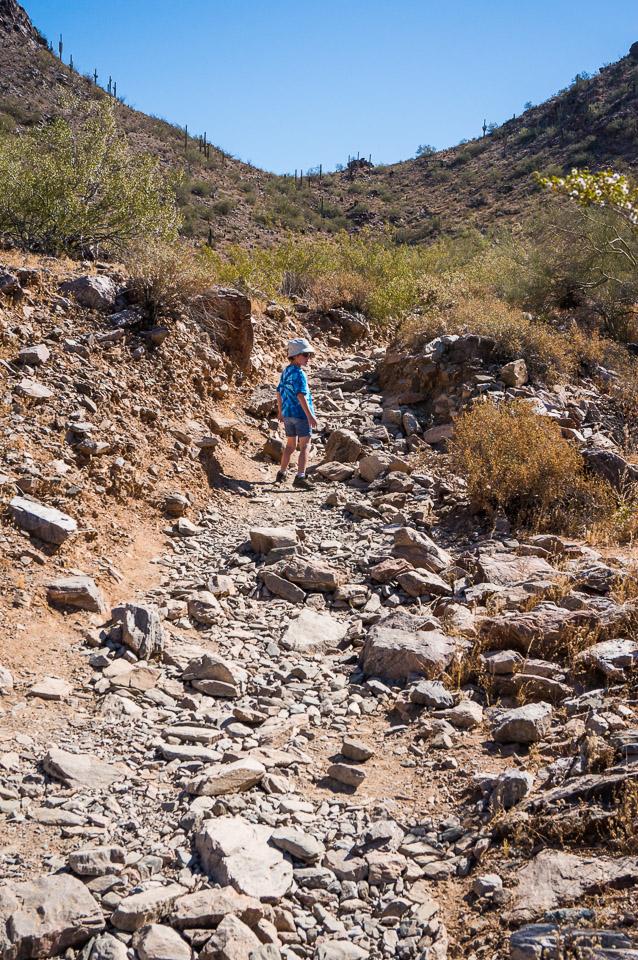 Trail 340 - Rocky Trail