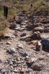 Trail 340 - Rocky