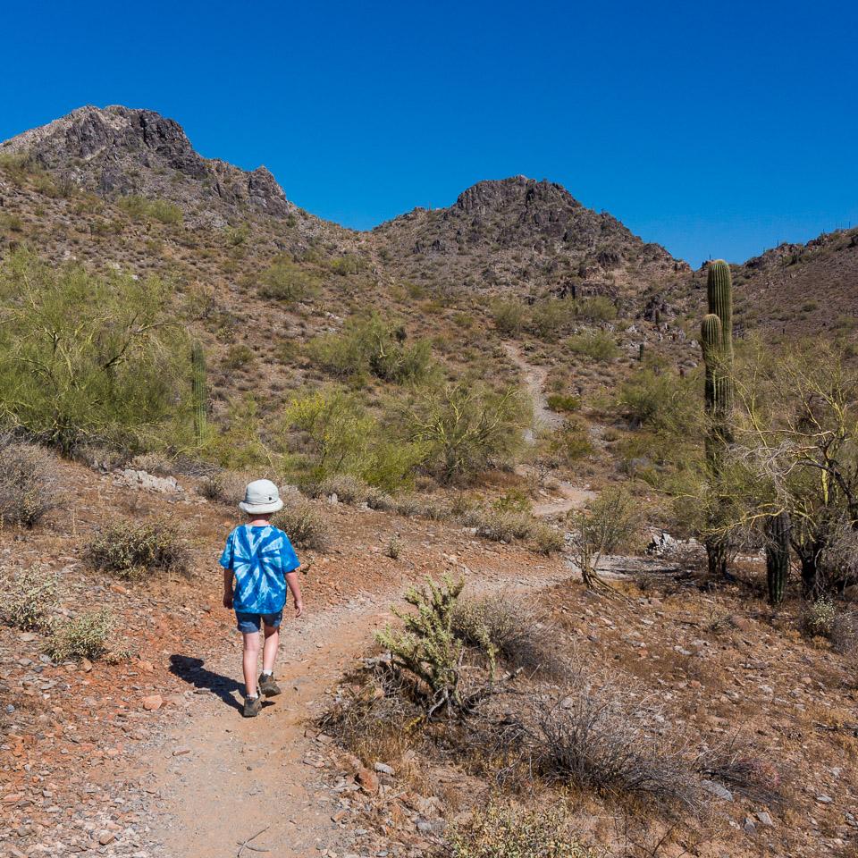 Trail 304 With Shortcut Hike Amp Bike Phoenix