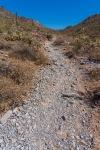 Trail 340 - Loose Trail
