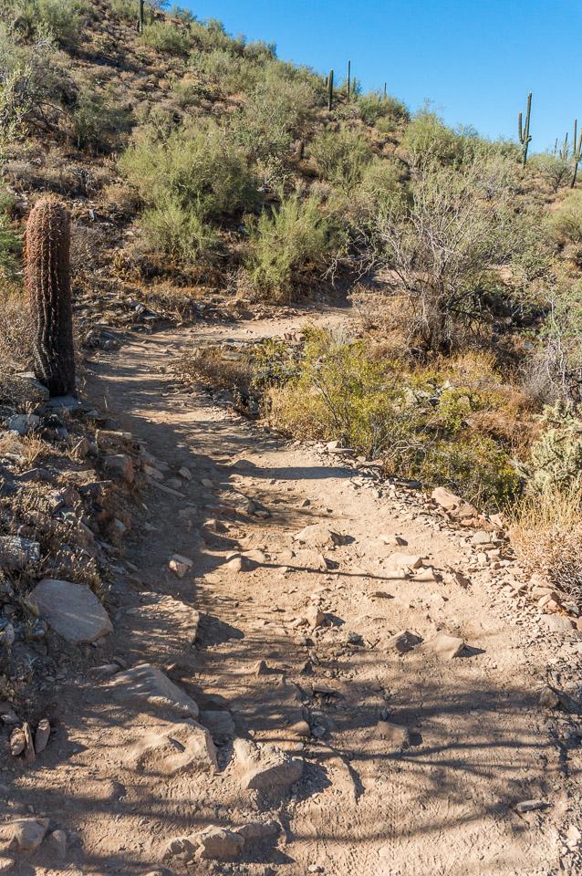 The Gateway Trail