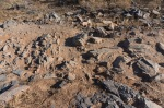 The Gateway Trail - Very Rocky in Parts