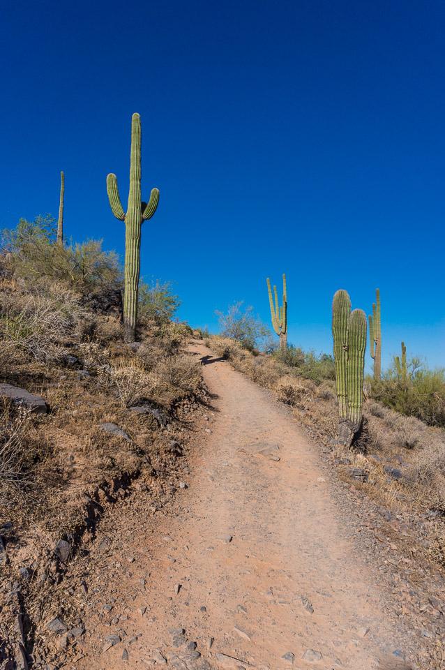 Gateway Loop Trail Mcdowell Sonoran Preserve Hike
