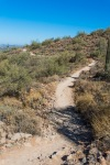 The Gateway Trail